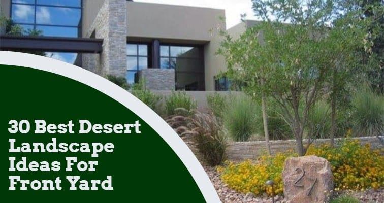 30 Best Desert Landscape Ideas For Front Yard Igra World